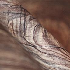 (10-2) Супер матовая древесная (Super matt wood grain)